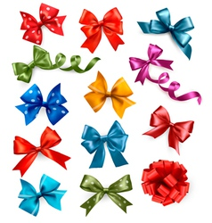 Big set of colorful gift bows with ribbons vector image vector image