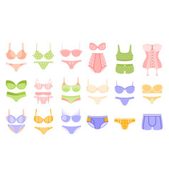 comfortable underwear in pastel colors matching vector image