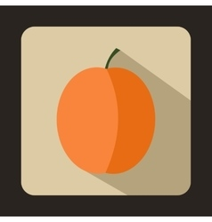 Fresh apricot icon flat style vector image