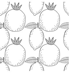 lemons and pomegranates black and white vector image