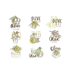 Organic olive product set for label design vector