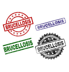 scratched textured brucellosis seal stamps vector image