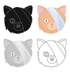 Sick cat with bandage on a head icon in cartoon vector