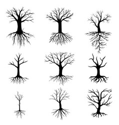trees without leaves set vector image