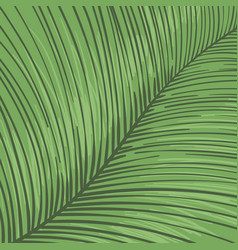 tropical leaf striped background hand drawn lines vector image