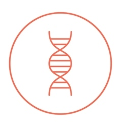 DNA line icon vector image