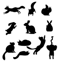 Isolated black silhouettes cat rabbit squirrel vector