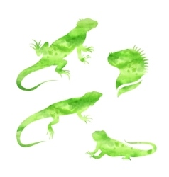 Lizard iguana watercolor set vector