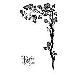 rose black branch vector image