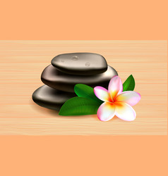 spa stones green leaves and tropical flower on vector image