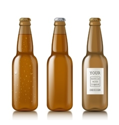 Templates realistic transparent bottles vector