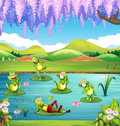 Frogs living in the pond vector image vector image
