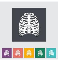 human thorax vector image