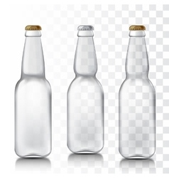 Set realistic glass bottles vector image vector image