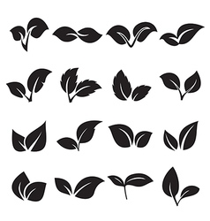 Two leaves icons vector image vector image