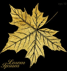 Hand drawn autumn maple leaf vector