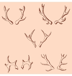 Horn sketch of a deer Pencil drawing by hand vector