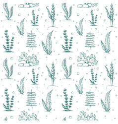 Seamless seaweed pattern isolated vintage vector