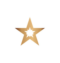 star logo graphic design template vector image