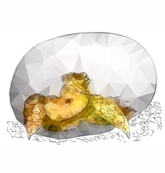 tortoise in egg vector image