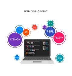 Web development infographic programming vector