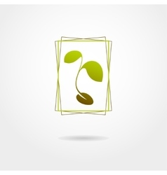 Plant isolated on white background vector image vector image