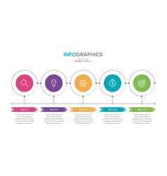 infographic label 5 options or steps vector image