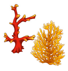 set red and orange corals isolated on a white vector image