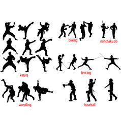 sport silhouettes fight vector image