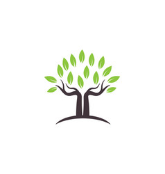 tree symbol and icon logo design vector image