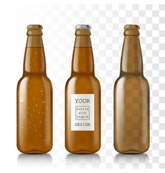 Empty glass bottles vector image