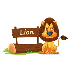 Cartoon zoo lion sign vector image