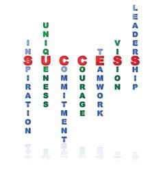Elements of success vector