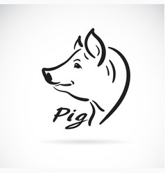 freehand pig head painting on white background vector image