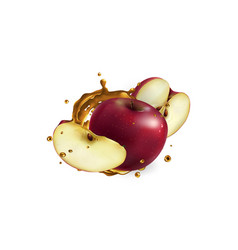 Fresh red apples and a splash fruit juice vector