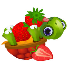 Funny turtle licks ripe strawberries isolated vector