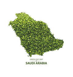green leaf map of saudi arabia vector image