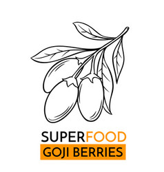 Icon superfood goji berry vector