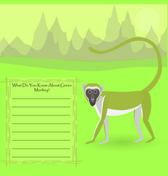 African green monkey vector