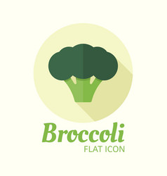 broccoli isolated flat style round icon vector image