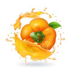 orange bulgarian pepper realistic 3d vector image