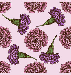 seamless pattern with hand drawn colored carnation vector image