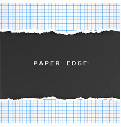 squared paper with torn edge checkered geometry vector image