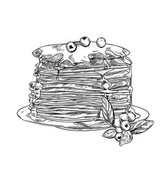 Stack pancakes with honey and blueberries vector