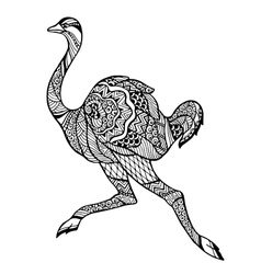 Zentangle stylized ostrich vector image