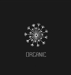 abstract graphic doodle dandelion decorative vector image vector image