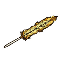 antique quill pen for writing colored sketch vector image