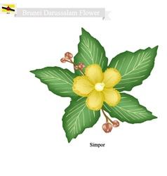 Brunei Darussalam Simpor Flower vector image