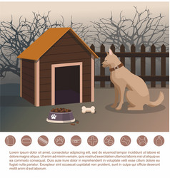 Dog sitting next to kennel pets accessories vector