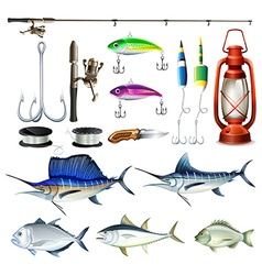 Fishing set with equipment and fish vector image
